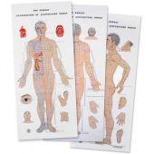 3 tavole di agopuntura