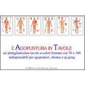agopuntura in tavole (6 poster)