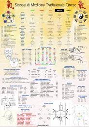 Sinossi di MTC - Poster cm 70x100