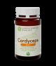 CORDYCEPS BASIC- 120 compresse