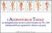Agopuntura in tavole
