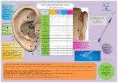 Scheda Auricoloterapia per tutti - Stress, Attacchi di panico, ansia e relax